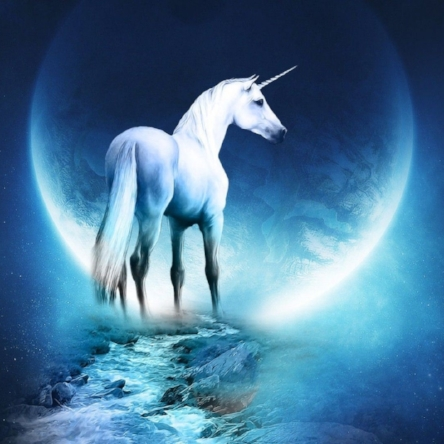 22468-unicorn-1920x1080-fantasy-wallpaper.jpg