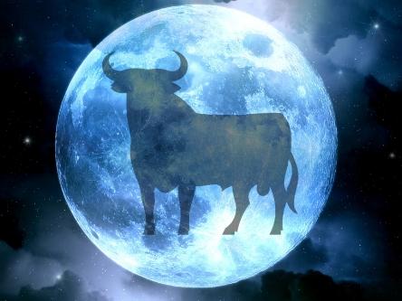 somya-blue-moon-taurus-e1448253862429.jpg