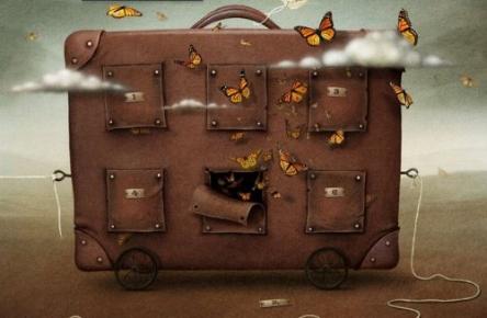 suitcase-butterflies.jpg