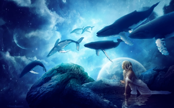 whales_dream-widescreen_wallpapers.jpg