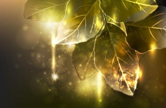 symphony-leaves-vector-material-symphony-stars-light.jpg