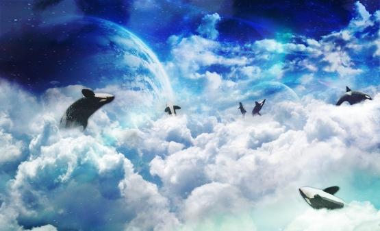 fantasy_whale_wallpaper_by_nephan-d4q0xp8.jpg