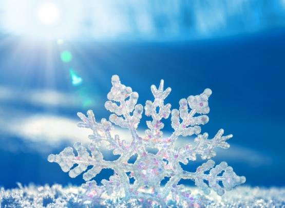 Real_snowflake-4.jpg