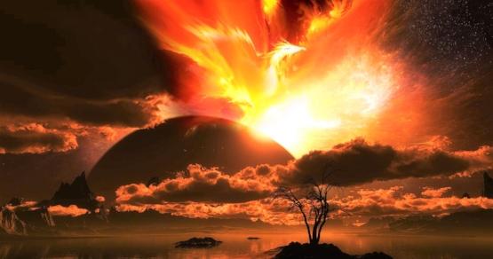 the-phoenix-rising.jpg