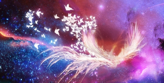 child-web-background-phoenix-space-offers-website-112208.jpg