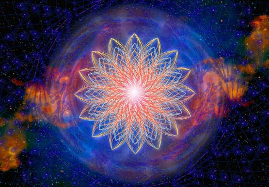 sacred-lotus-giclee-ap.jpg