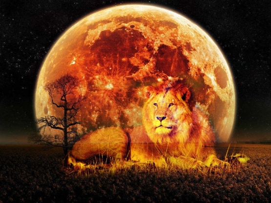 The-February-10th-Lunar-Full-Moon-Eclipse-in-Leo-A-Spiritual-Perspective.jpg