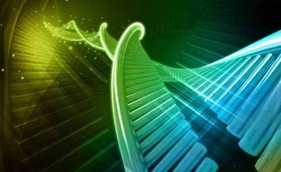 geneticslonglife1215.jpg