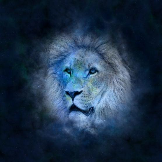 horoscope-639123_640.jpg