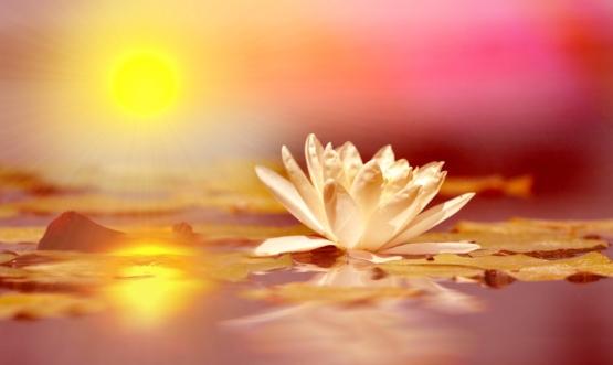kundalini-awakening.jpg