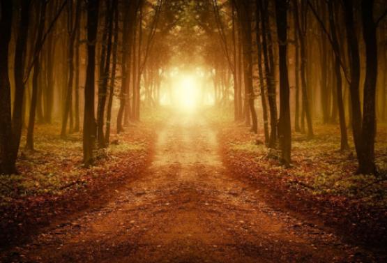 Spiritual-Path.png