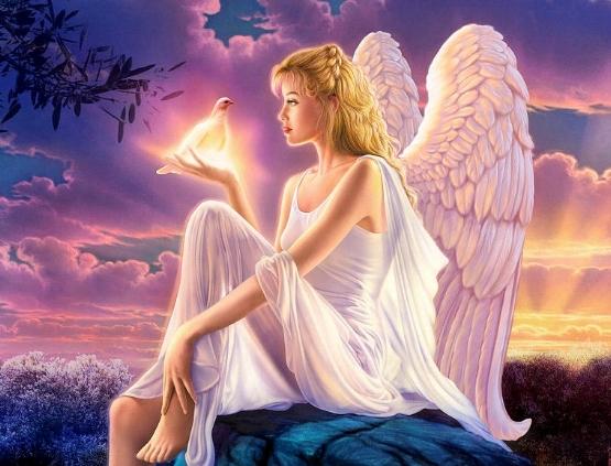 dusk-angels-dusk-variant-1-andrew-farley.jpg