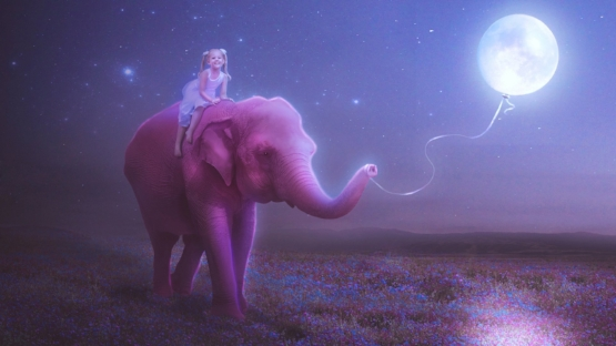 girl-child-elephant-moon-ball-string-picture-mood-happiness-smile-sky-night-star-flower-meadow-pink.jpg