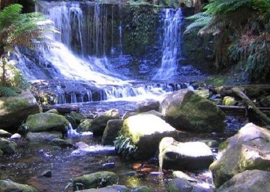 River-Meditations-600p_large.jpg