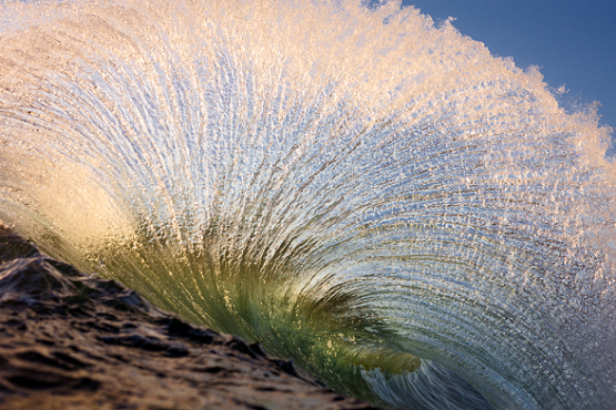 warrenkeelan_metamorphosis.png