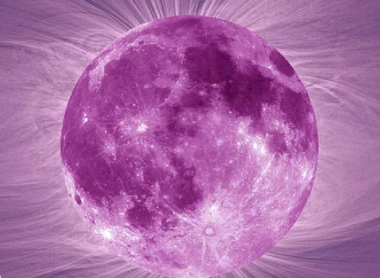 pink-full-moon-5-planet-retrograde-evolve-and-ascend-1400x579.jpg