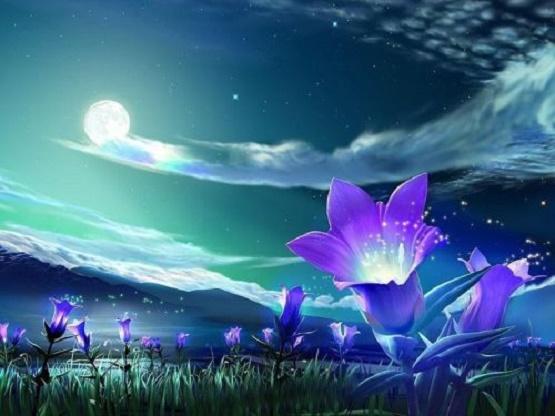 flowers-of-shambhala.jpg