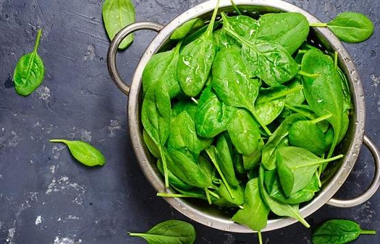 18.-Spinach.jpg