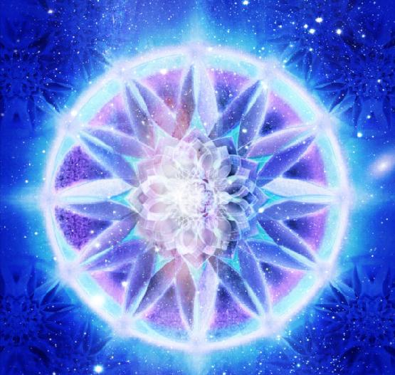 lotus-star.png