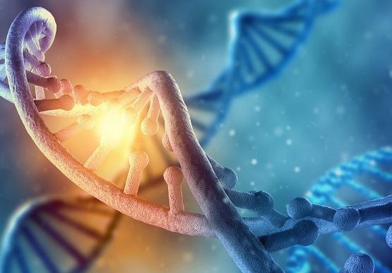 DNA-activation-brendan-d-murphy.jpeg