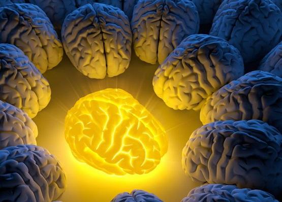 brain_healing_turmerones_turmeric.jpg