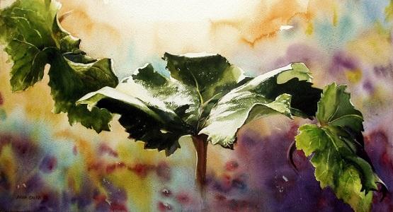 5_doodlewash-watercolor-by-anna-galea-of-leaves.jpeg