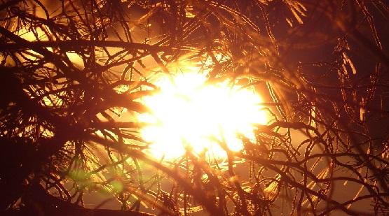 solstice-sun1.jpg