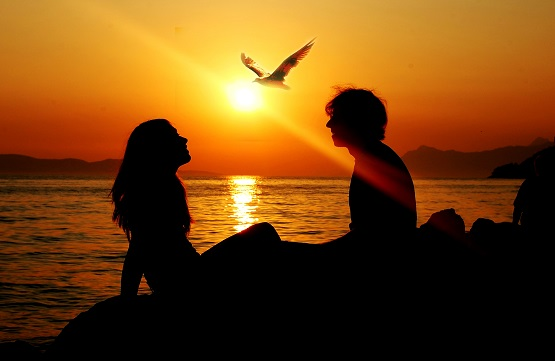 sunset-summer-sea-seagull-bird-girl-man-silhouette-sun-ray-love-freedom-together8.jpg