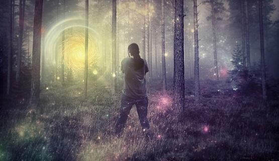 forest-764924_640.jpg