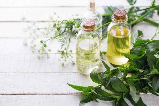 essential-oil-bottles-on-a-table-mint.jpg