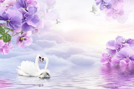 Wall-paper-Purple-lilac-flowers-dove-swan-non-woven-wallpaper-mural-wall-stickers-wallpaper-papel-de.jpg