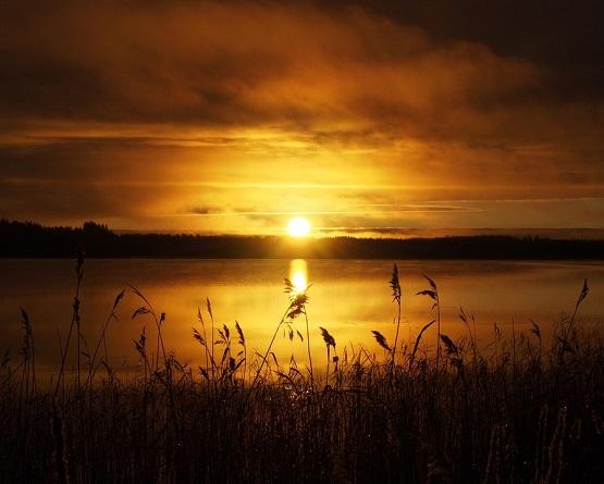 sun-1018287_960_720.jpg
