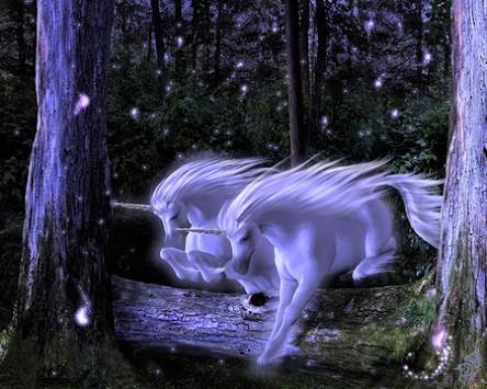 magic_horses_by_italian_horse-d89t2uz.jpg