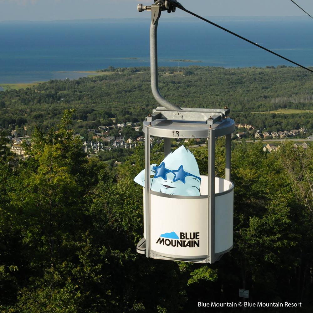 Gondola Ride & Mountaintop Photos!