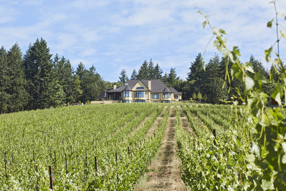 Newberg Custom Home Vineyard