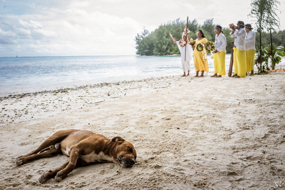 paulo-lorna-ceremonie-10.jpg