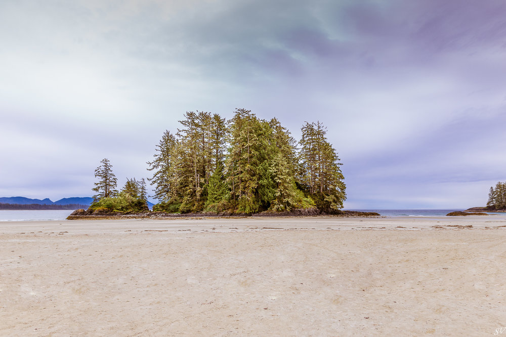vancouver island-35.jpg