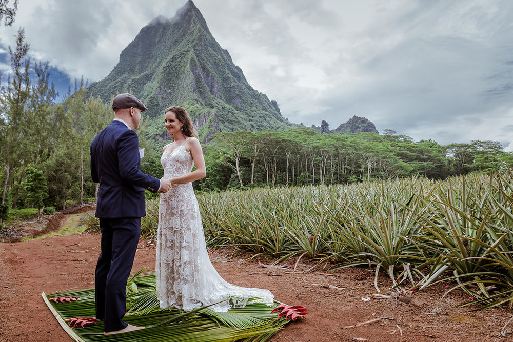 Elopement set up by us on the middle of pineapple field in Moorea, French Polynesia
