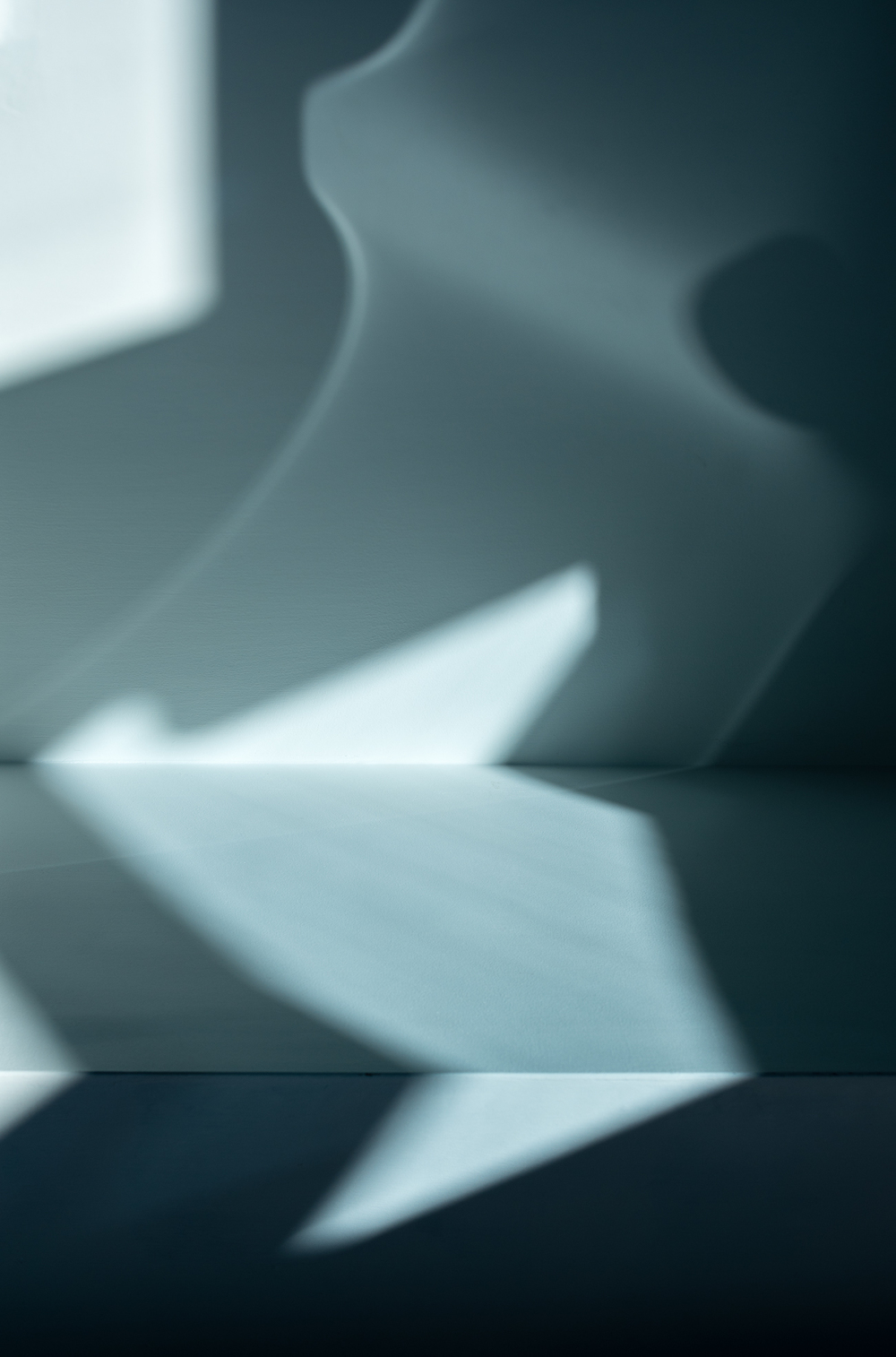 Reflections-and-shadows-(15-of-1).jpg