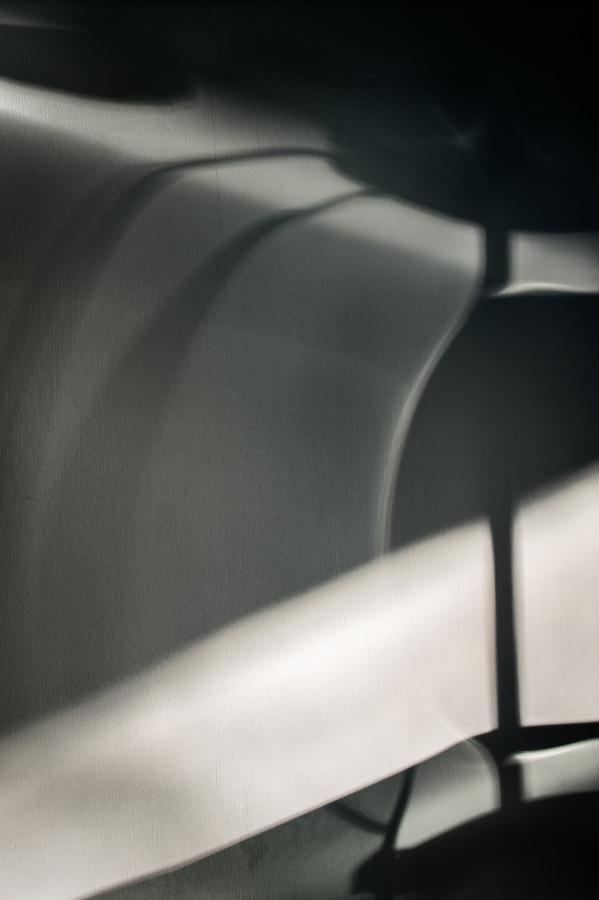 shadows-(57-of-161).jpg