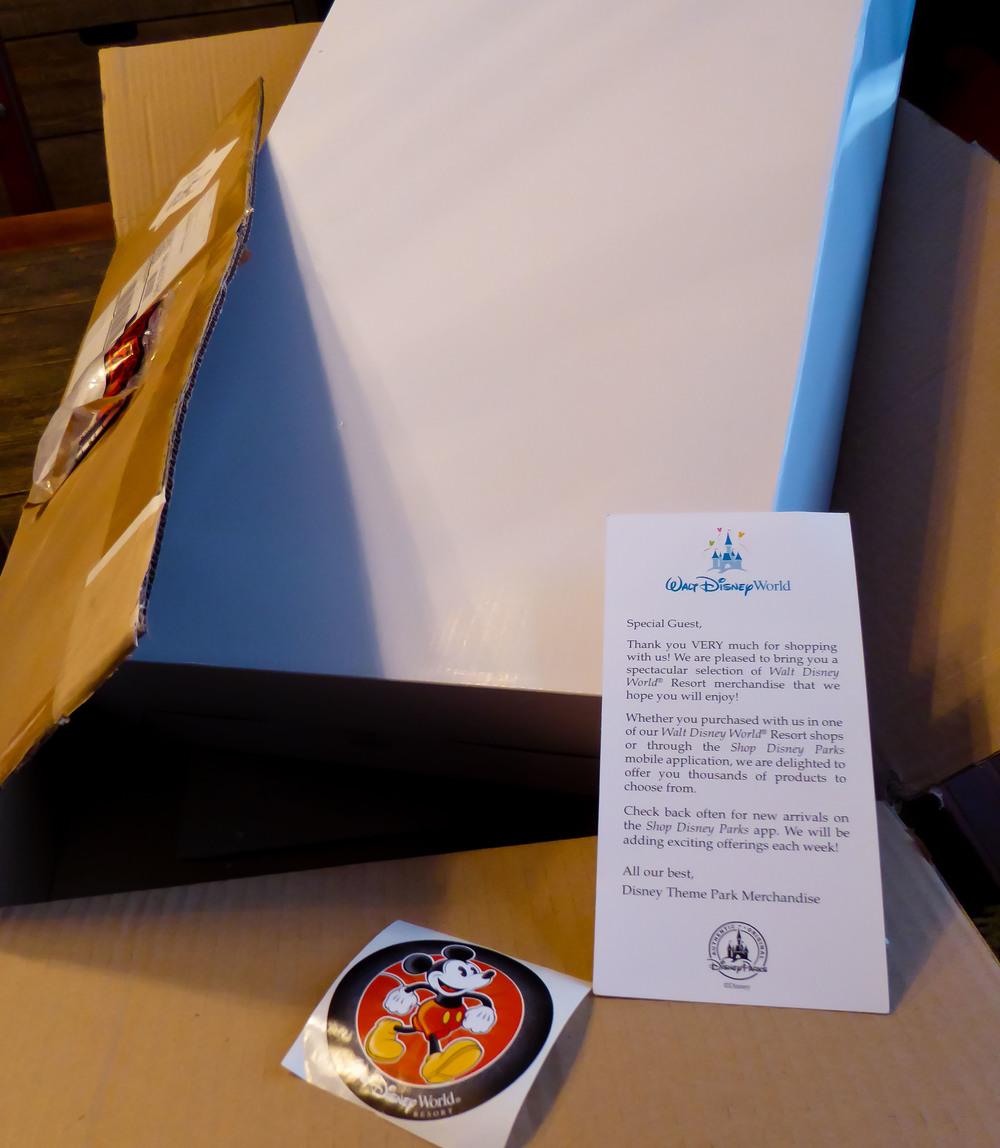 Walt_Disney_World_Shipping_(1_of_1).jpg