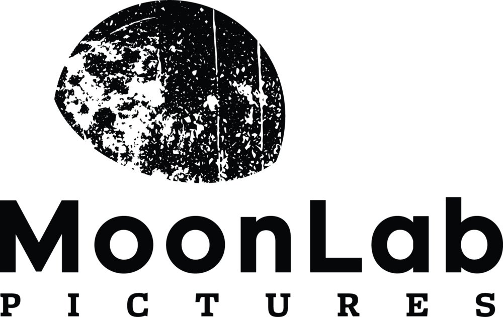 MoonLab Pictures