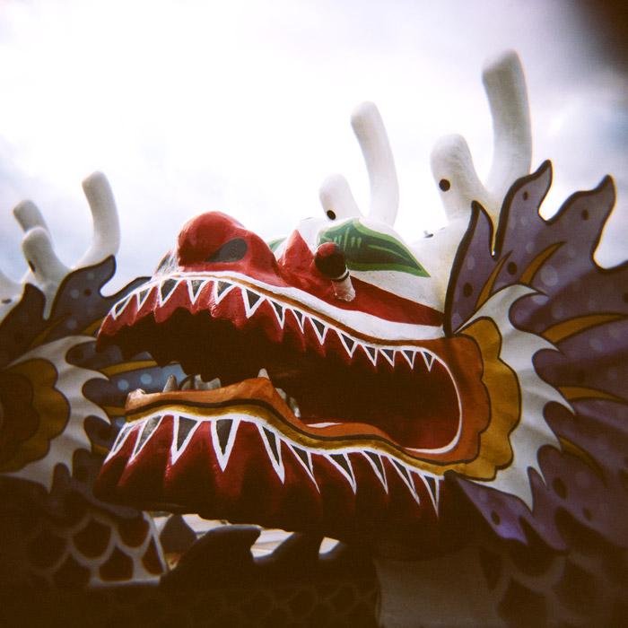 aw-holga-dragon1.jpg