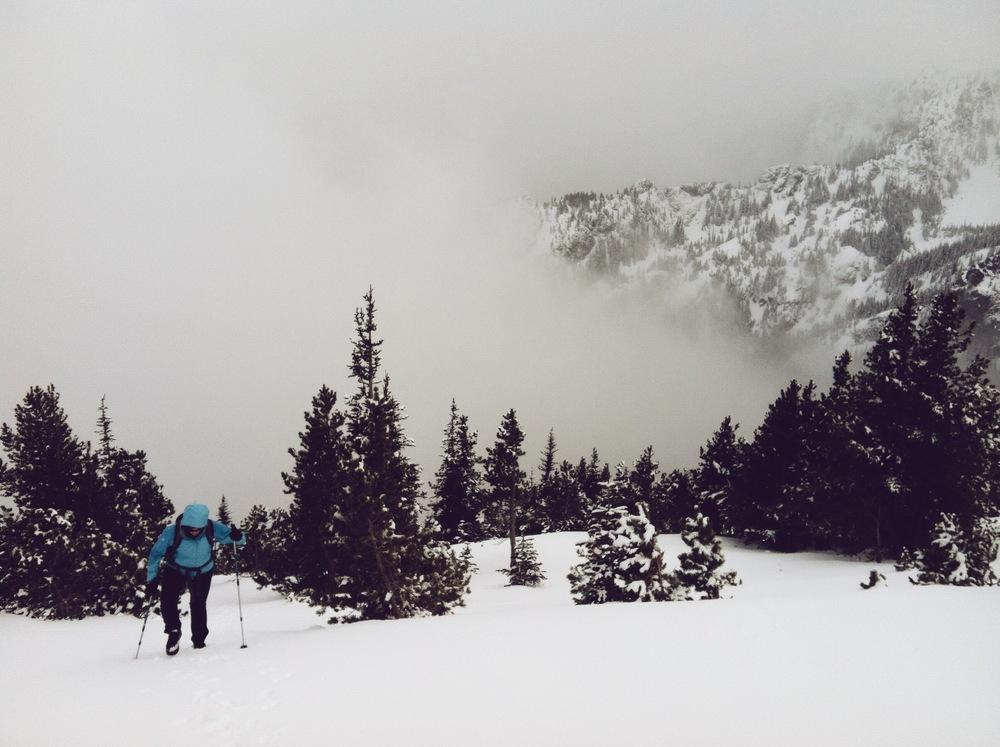 Mount Townsend - Olympic Nat'l Forest, WA