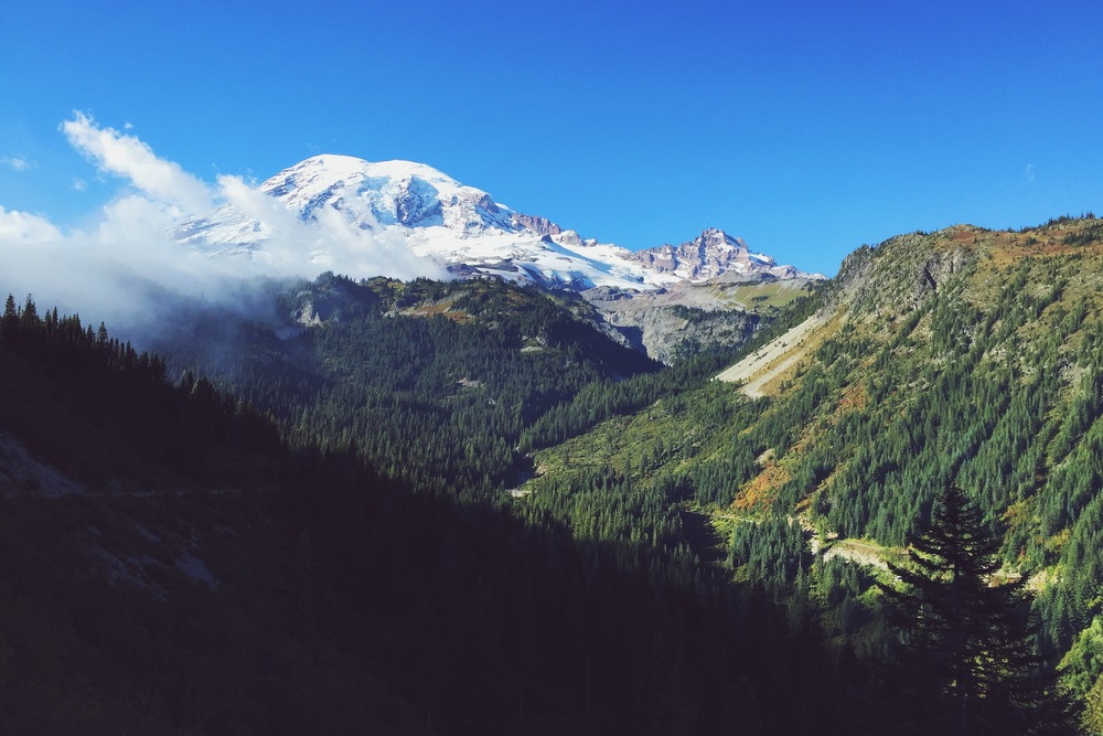 Mount Rainier Nat'l Park