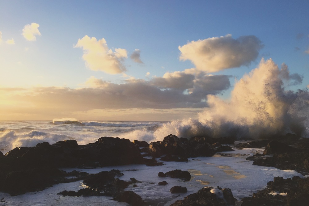 Cape Perpetua State Park, OR