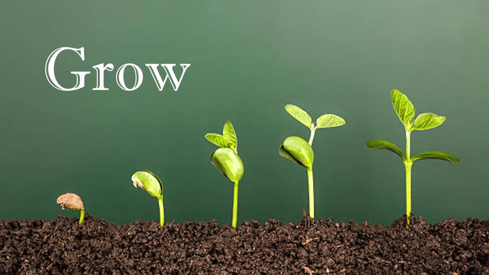 grow sermon series.jpg
