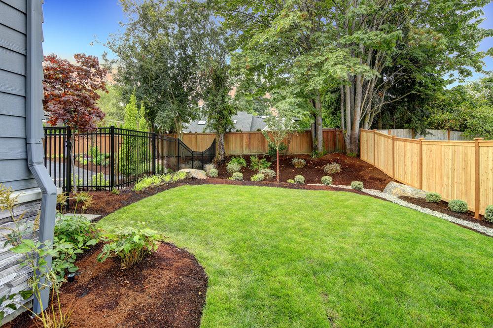 Planting landscape design clean color defined garden