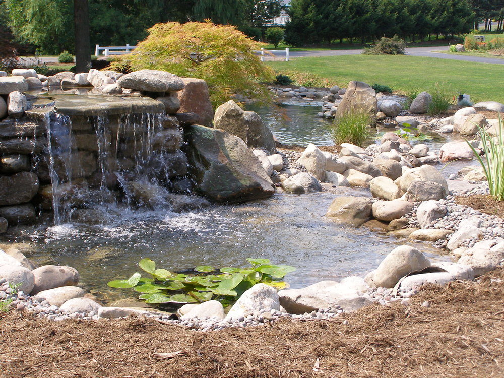 waterfall pond landscape design plantings