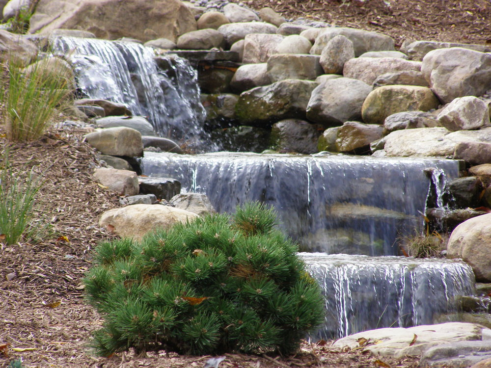 waterfall plantings stream landscape design